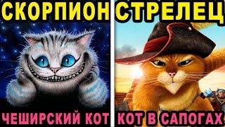 КАКОЙ ТЫ СКАЗОЧНЫЙ КОТИК ПО ЗНАКУ ЗОДИАКА. Какая ты Кошка по Знаку Зодиака