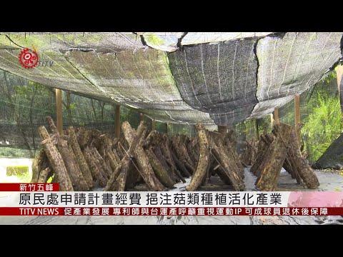 竹縣申請2820萬經費 挹注菇類種植活化產業 2019-04-19