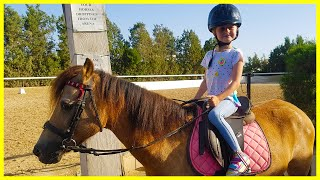Детский канал на уроке верховой езды Видео для детей Лошади