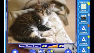 Игра Найди кота Одноклассники как пройти 1121, 1122, 1123, 1124, 1125 уровень, ответы?
