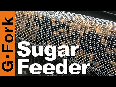 Best Sugar Feeder? - Beginnning Beekeeping - GardenFork