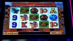 Huge Slot Machine Wins Hunters Dream, Multiplay 81, Multi - Bonus Wheel. Tragaperras en Espana