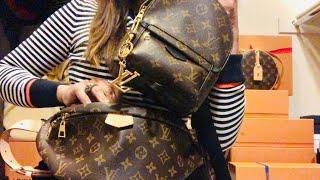 Louis Vuitton Bumbag vs Palm Spring Mini