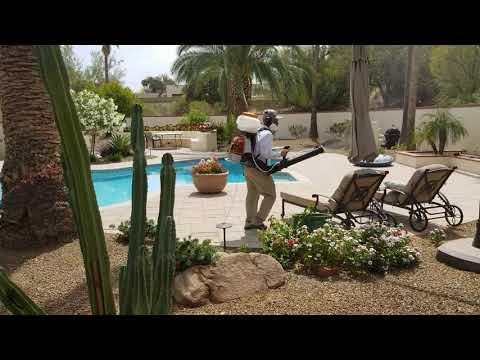 Mosquito Control Paradise Valley AZ - Bug Guardian Pest Prevention