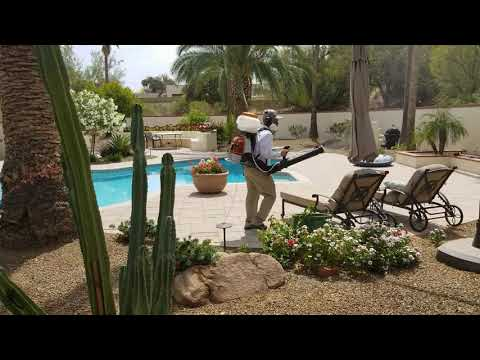 Mosquito Control Paradise Valley AZ - Bug Guardian Pest Prevention