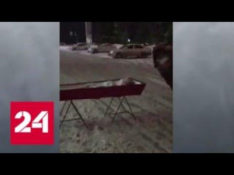 Губернатор потребовал разобраться в скандале с покойником в гробу у мэрии - Россия 24