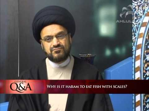 Why Is It Haram To Eat Fishout With Scales? | General Q&A