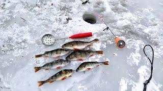 Первый раз рыбачу на озере Бабинское Ловля окуня в марте 2021