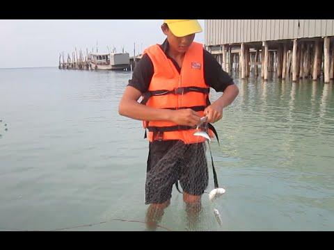 Net Fishing at Koh Rong Sonleum Island