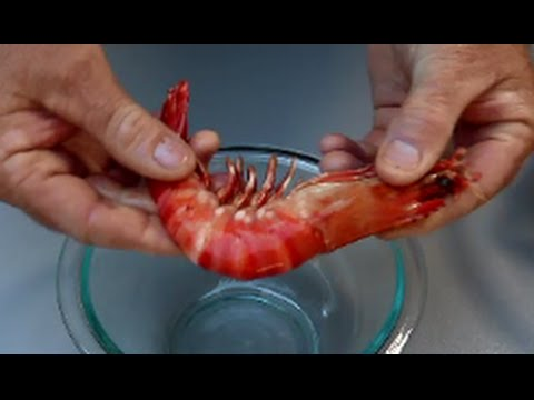 How to Peel Prawns   The Hook and The Cook