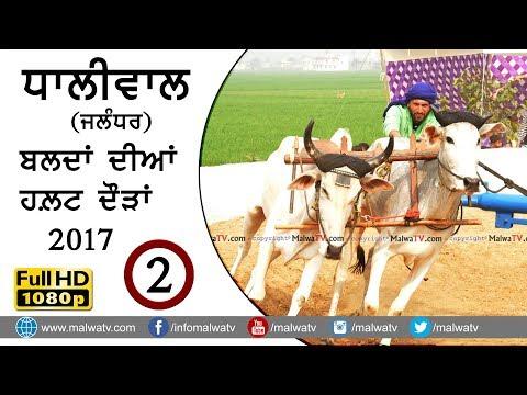 ਧਾਲੀਵਾਲ ● ਬਲਦਾਂ ਦੀਆਂ ਹਲਟ ਦੌੜਾਂ - 2017 ● DHALIWAL (Jalandhar) BULLOCK HALT RACES ● Full HD ● Part 2nd