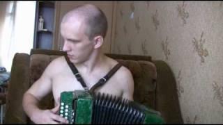 Цыганочка(гармонь).Tsiganochka.