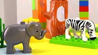Машины сказки. Логопедические занятия для малышей. Учим животных: животные Африки. Видео для детей.(Развивающее видео для малышей - Машины сказки. Логопедические занятия для детей. Сегодня мы вместе с Машей,..., 2015-03-17T12:07:55.000Z)