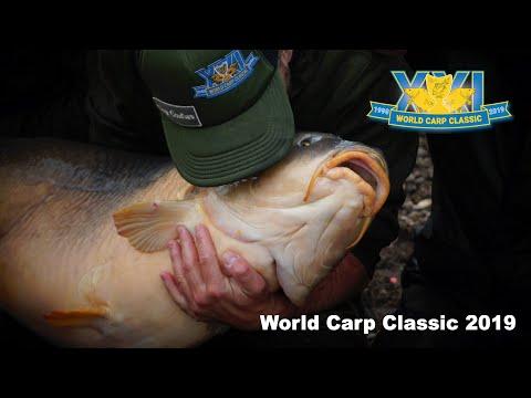 Carp Fishing - The World Carp Classic 2019 (Full Video)