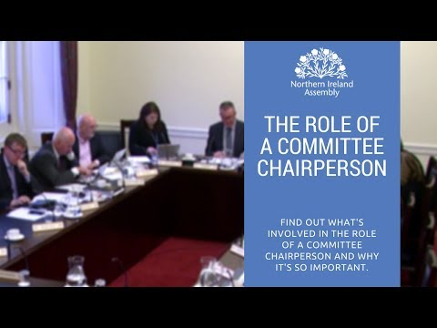 Role of a Committee Chairperson