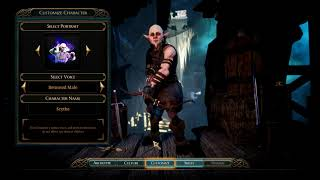 The Bard's Tale 4: Character Creation