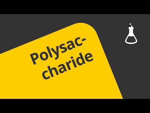 Die Polysaccharide - Definition  | Chemie | Organische Chemie