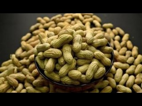 Helping sufferers overcome peanut allergies