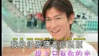 Andy Lau - Hai Ji De Wo Ma (Karaoke)