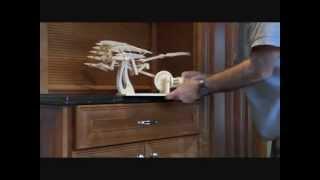 Leonardo Davinci's Ornithopter