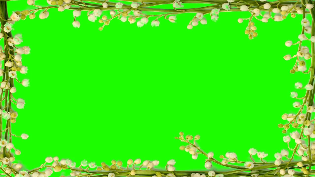 Full Hd Green Screen Effect | Indian Wedding Frame | Title Intro Effect Background | Misa Studio