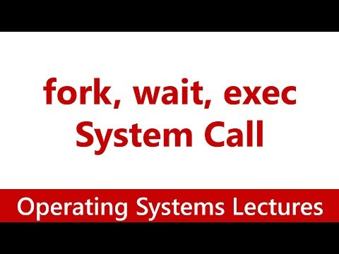 Operating System #13 System Calls for Process Management | fork, wait, exec