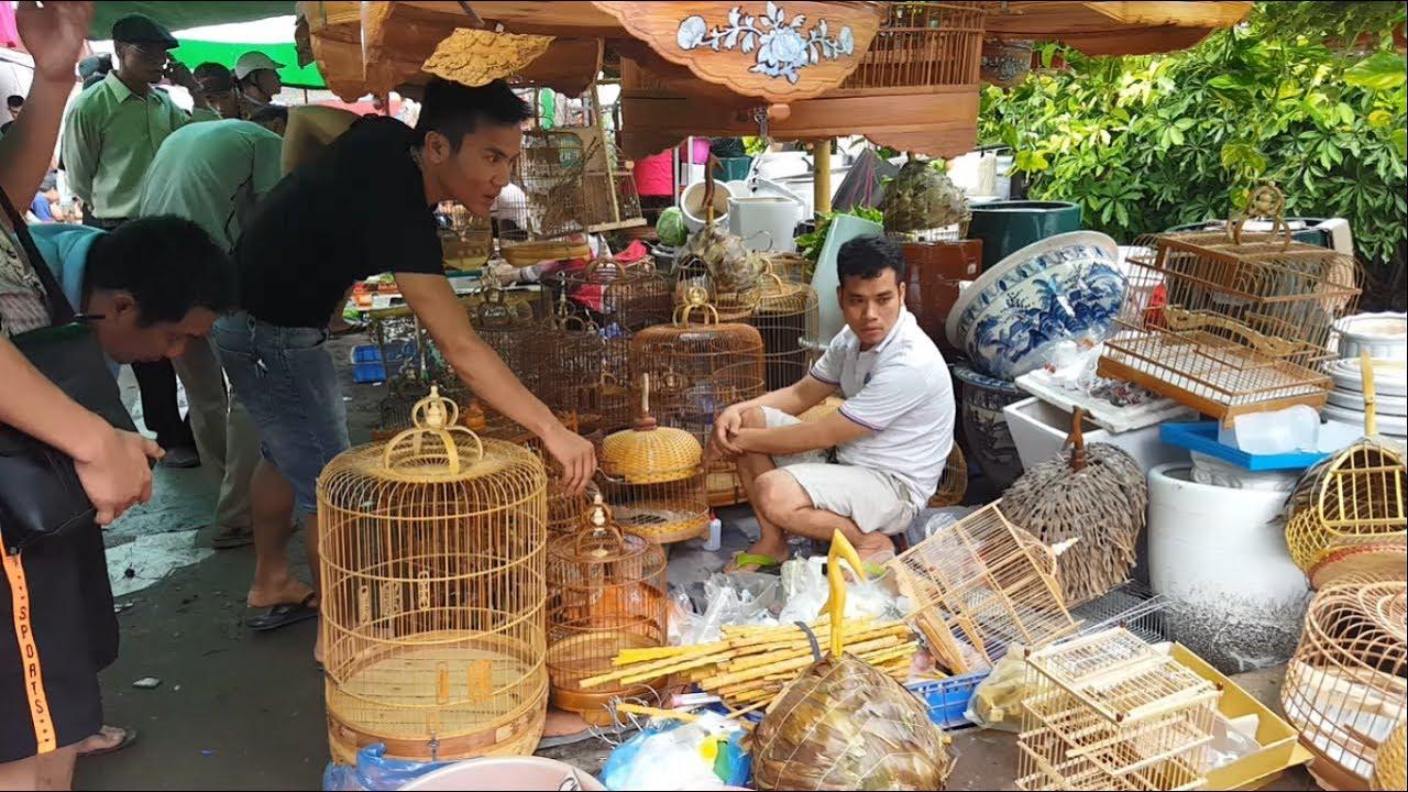 Phiên chợ độc đáo với những giống chim cảnh đẹp rẻ và lạ - Bird Market