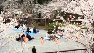 Trip to Japan by Neelam Gurung Part 1