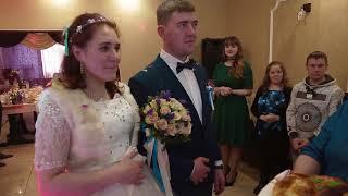 Свадебный фильм в СПб в Загсе Фрунзенского района зимой