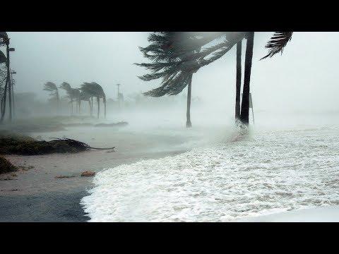 Жуткий ураган в Индии, массовая эвакуация, град в Таджикистане. Погода в СНГ и мире