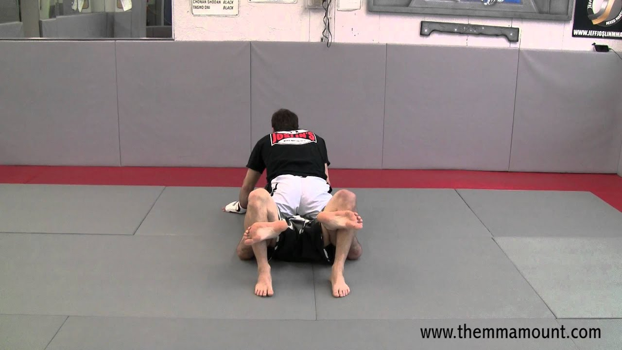 MMA Technique - Dominate From The MMA Mount Position - The Low Mount