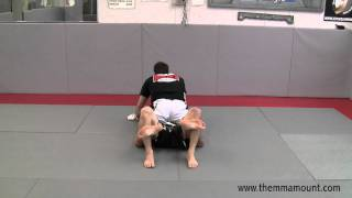 MMA Technique – Dominate From The MMA Mount Position – The Low Mount