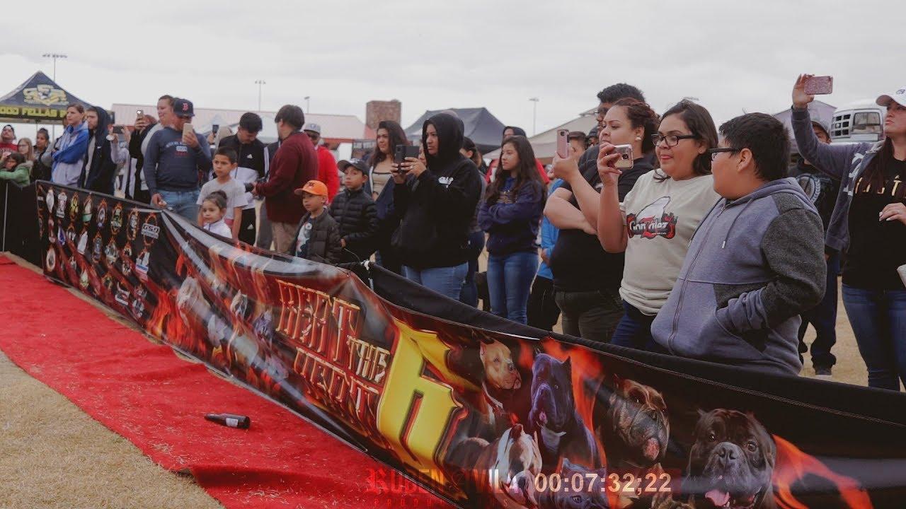 Beat The Heat 6 - Las Vegas, NV (Bully Event) 2018