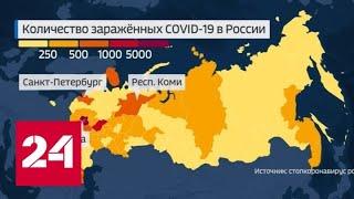 Коронавирус в России: свежая статистика и тестирование новых вакцин - Россия 24