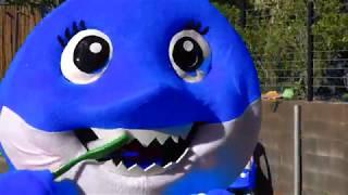 Mommy Shark Song & Brushing shark teeth