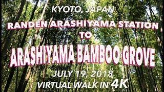 Arashiyama Bamboo Grove 7/19/2018 [4K]