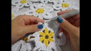 Hilda Eroles - vídeo 12 parte 1 - flor margarida em tapete