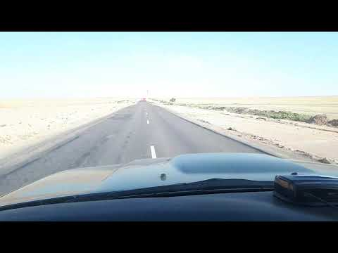 Дорога Курты - Бурыбайтал 230 км жести.