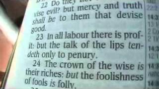 Proverbs 14 King James Holy Bible