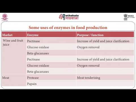 Developments in enzyme technology and developing enzyme modified food ingredients