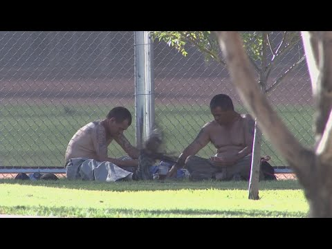 Closure of the Phoenix Library has displaced homeless