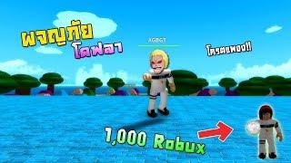 ROBLOX - One Piece Pirates Wrath การผจญภัยในท้องทะเล!! และการเสียRobuxครั้งแรก