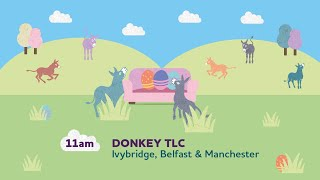 Donkey TLC (Pre-recorded) | Sanctuary From Your Sofa
