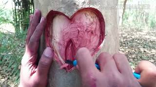 Wow natural art...... Best SeX Video Ever....beautiful art in tree