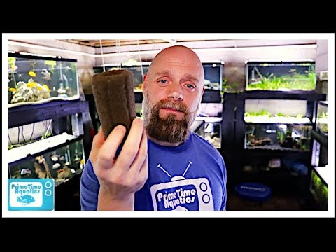 Fish Tank Filtration: How Much Do You Need?