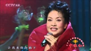 茉莉花 05年春节歌舞晚会 现场版--彭丽媛.mp4