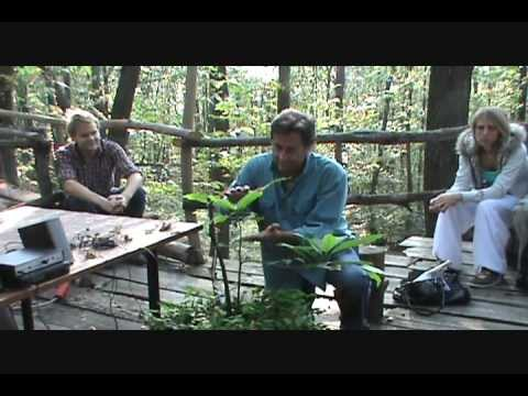 Singing Plants at Damanhur