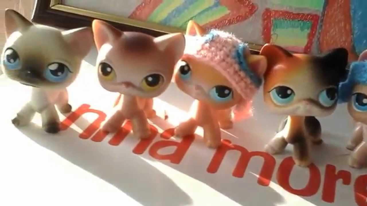 Интернет магазин ozon. Ru: купить товары бренда littlest pet shop, каталог littlest pet shop с ценами, фото, отзывами о товарах. Купить новинки.