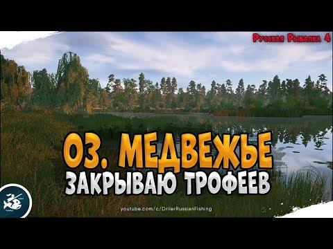 Почётный рыболов • Закрываю трофеев на Медвежке • Driler - Русская Рыбалка 4