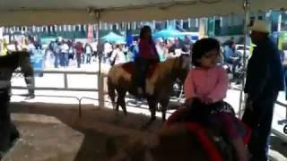 aashna s pony ride at del mar fair san diego ca